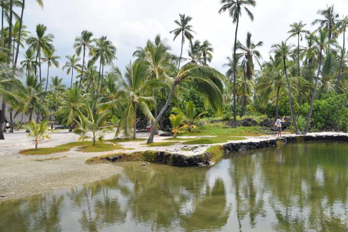Hawaii, a spasso per Big Island