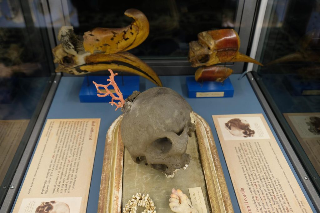 Calci, tra storia, natura ed enogastronomia